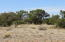 1125 Red Butte Road, Williams, AZ 86046