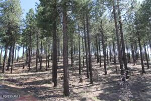 3635 Bridle, 31, Flagstaff, AZ 86005