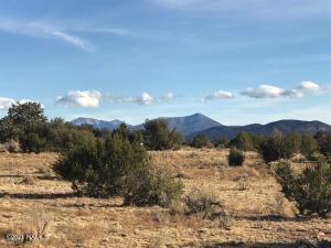 3593 S Alden Glen Road, Williams, AZ 86046