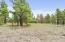 470 N Pine Cliff Drive, Flagstaff, AZ 86001