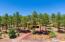 4085 Lariat Loop, Flagstaff, AZ 86005