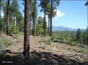 3715 S Bridle Path, Flagstaff, AZ 86005