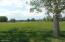 Lush golf course grass views