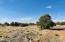 4752 Lasso Loop, Williams, AZ 86046