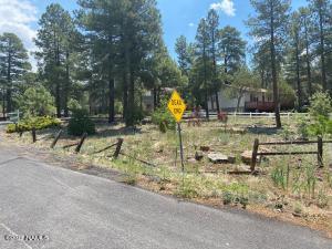 1065 E Cactus Wren Circle, 223, Munds Park, AZ 86017