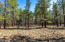 17560 S Osprey Circle, Munds Park, AZ 86017
