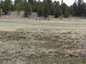 5576 Big Game Trail, 18, Flagstaff, AZ 86001