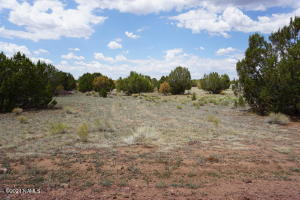 245 E Greenbriar Drive, 509, Williams, AZ 86046