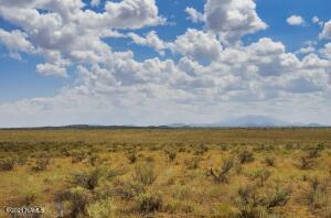 Xxxx S Prickly Pear Wash, Williams, AZ 86046