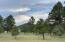 3159 Forrest Ranches Loop, Parks, AZ 86018