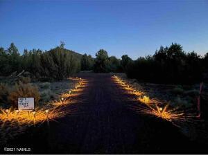 Beautiful solar driveway