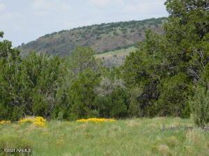 1319 W Canvasback Trail, 407, Williams, AZ 86046