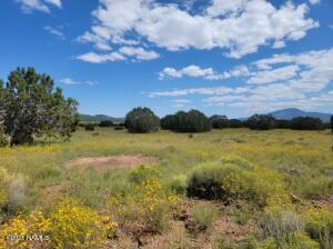 7923 Daisy Drive, 27, Williams, AZ 86046