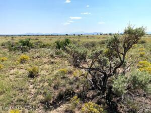 1668 E Mission Drive, Williams, AZ 86046