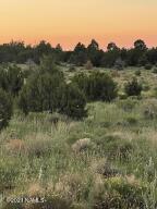5350 E Lasso Loop Road, 436, Williams, AZ 86046