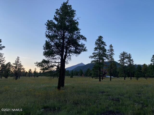 3353 N Cazadero Trail, Flagstaff, AZ 86001