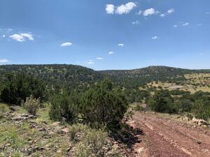 10920 Mesa View Road, Williams, AZ 86046