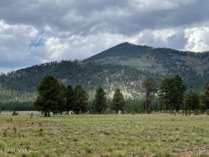 17404 Crowley Trail, Flagstaff, AZ 86001