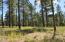 2684 S Pinyon Jay Drive, Flagstaff, AZ 86005
