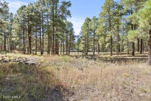 2466 Edward Ayer, Flagstaff, AZ 86005