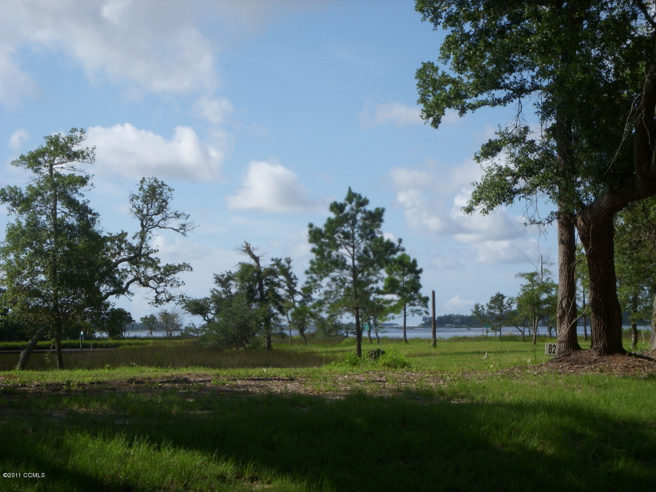 RECENTLY REDUCED LOTS. New development in Bluewater Cove. The Oaks offers you awesome views of the White Oak River with all the amenities of home. Clubhouse,pool, boat ramp and day dock with gated community. Back gate open daily off of Buster Road call for gate code