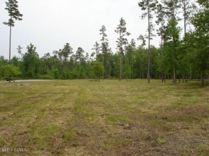 This picture was taken when the lot was last mowed.