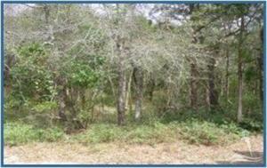 43 Fort Holmes Trail W, Bald Head Island, NC 28461