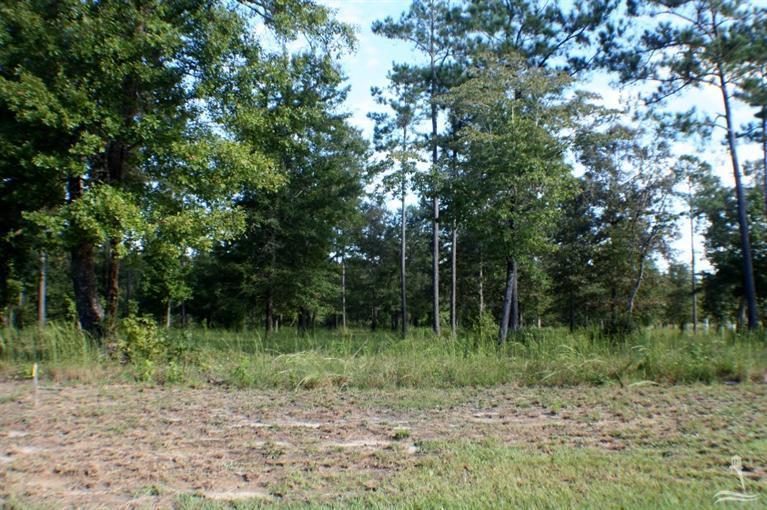 529 N Wild Rice Drive Supply, NC 28462