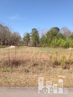 138 Quilt Road- Supply- North Carolina 28422, ,Land,For Sale,Quilt,30517801