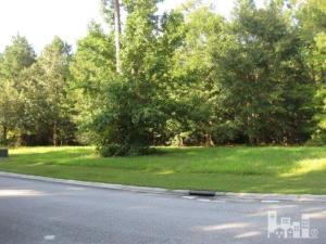 117 Old Vine Path, Wallace, NC 28466