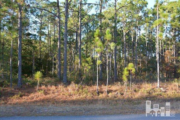 Masters Drive Southport, NC 28461