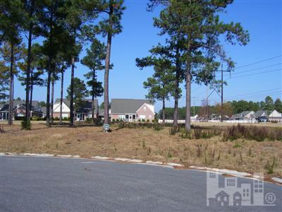 1124 Hampton Pine Court Leland, NC 28451