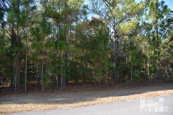 Reidsville Road Southport, NC 28461