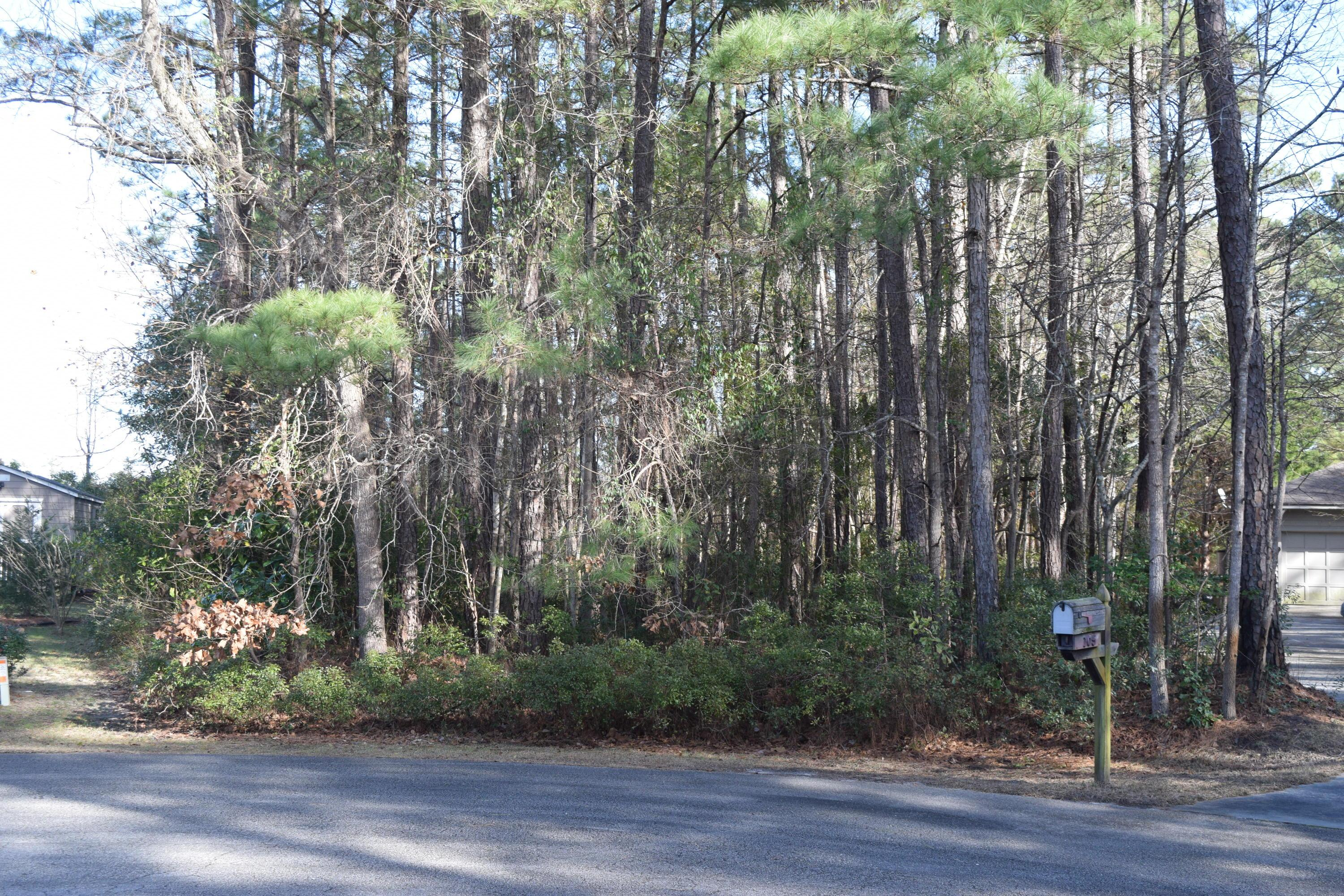 Lot 32 Eagle Lane- Hampstead- North Carolina 28443, ,Land,For Sale,Eagle,100000460