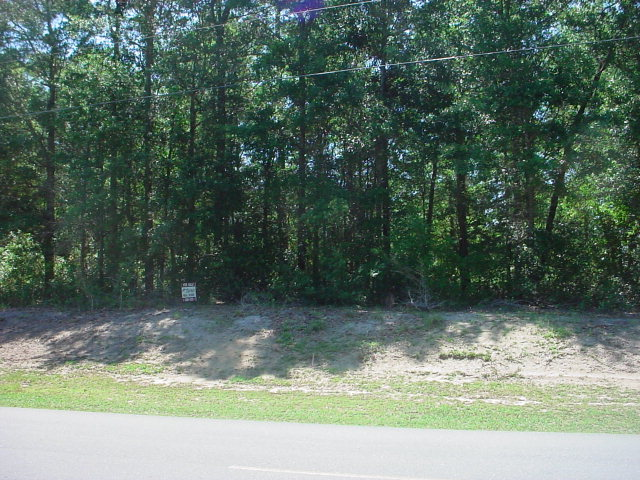 HIGH WOODED LOT, POSSIBLE WATER VIEW. Owner may consider owner financing with 30% down.