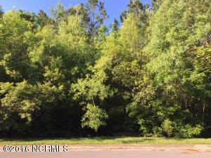 3603 37 White Drive, Morehead City, NC 28557