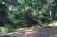 9 Elephants Foot, Bald Head Island, NC 28461