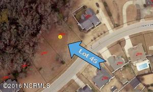 3809 45 Trace Drive W, Wilson, NC 27893