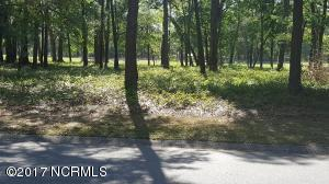 This is a highly elevated homesite absolutley beautiful and best priced in Brunswick County