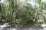 205 Muscadine Wynd, Bald Head Island, NC 28461