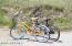 14 Fort Holmes Trail, Bald Head Island, NC 28461