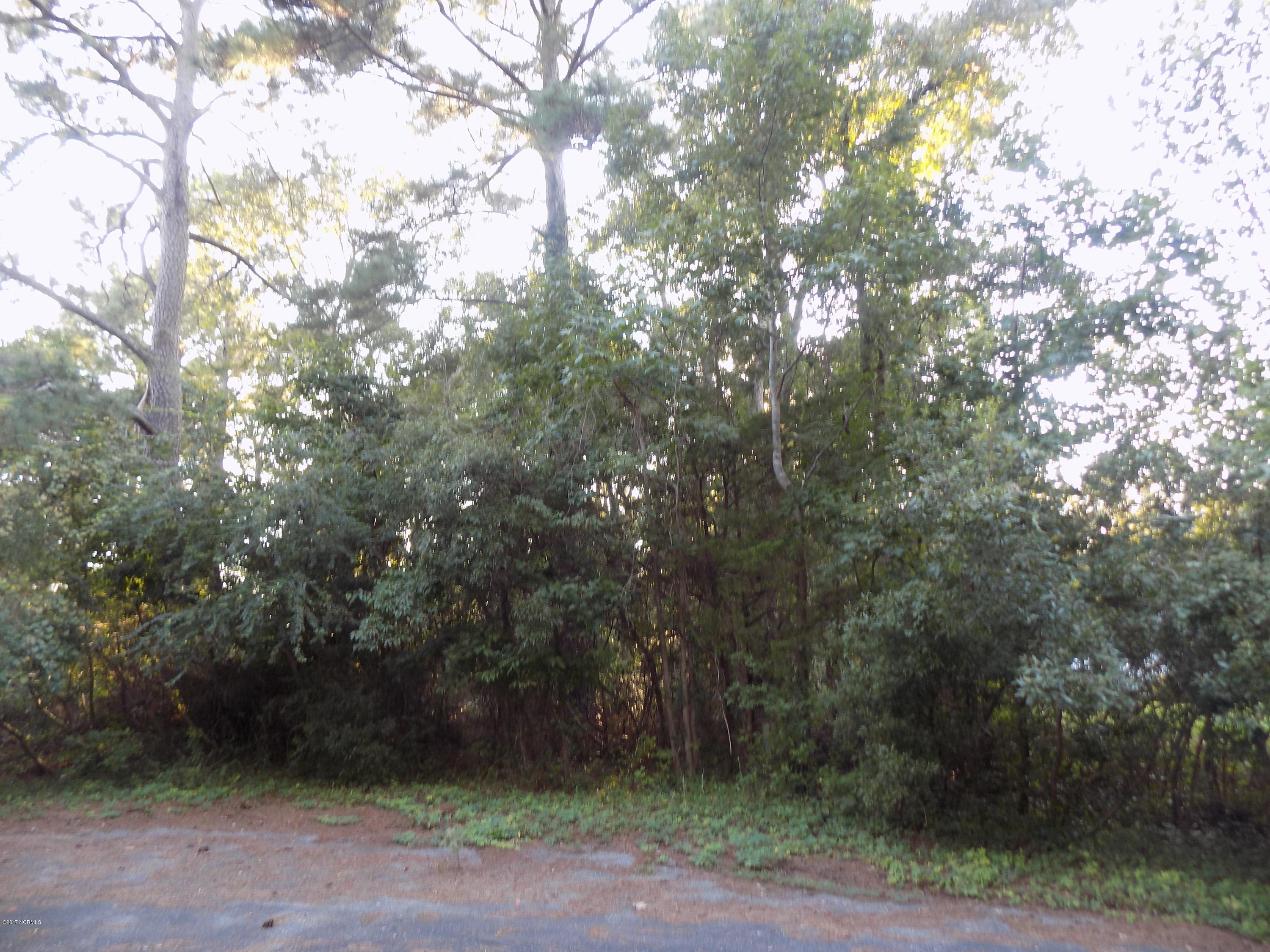 891 Forest Meadow Court Shallotte, NC 28470