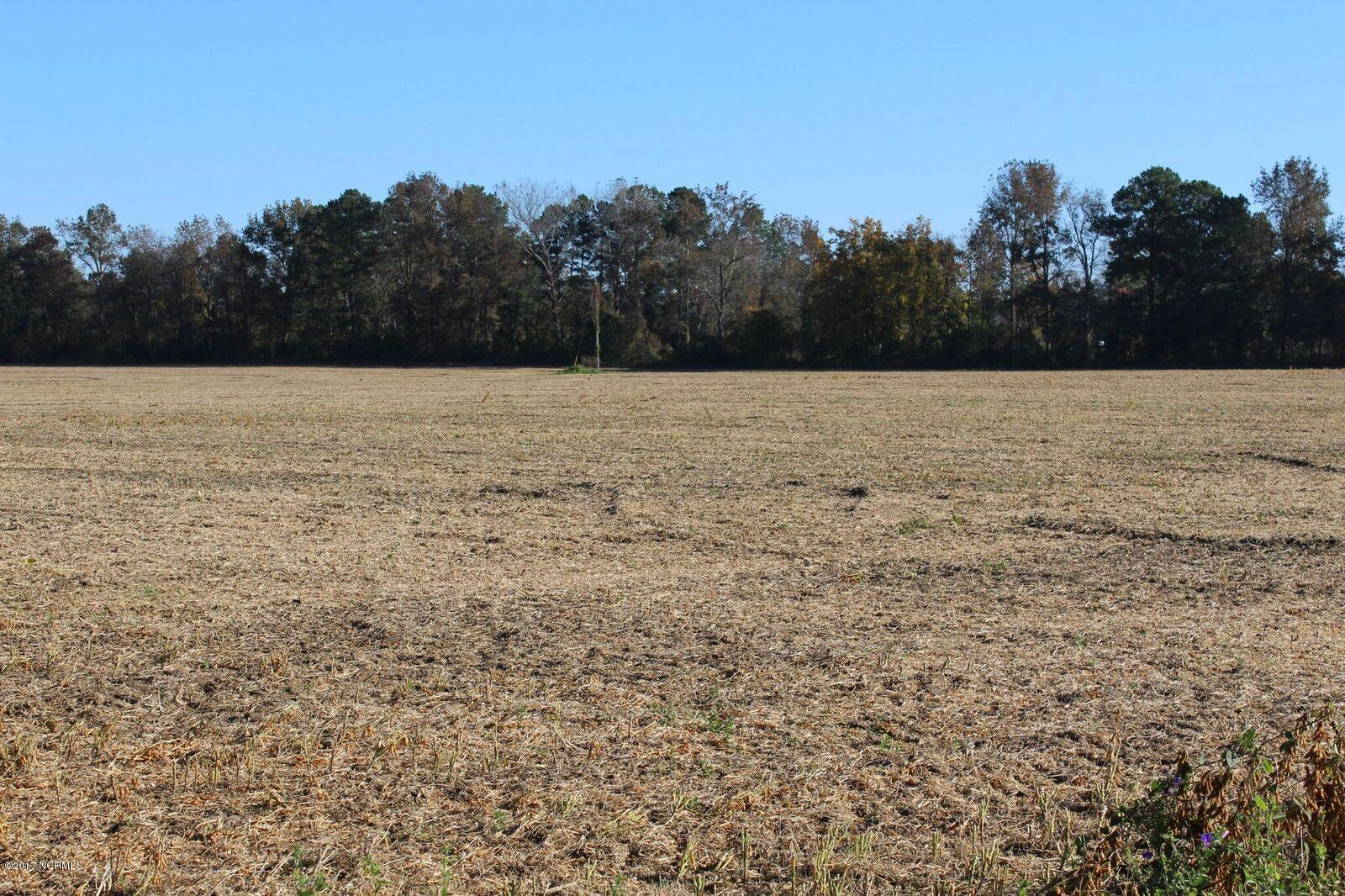 16.8ac Perry Rivenbark Road- Warsaw- North Carolina 28398, ,Land,For Sale,Perry Rivenbark,100089724