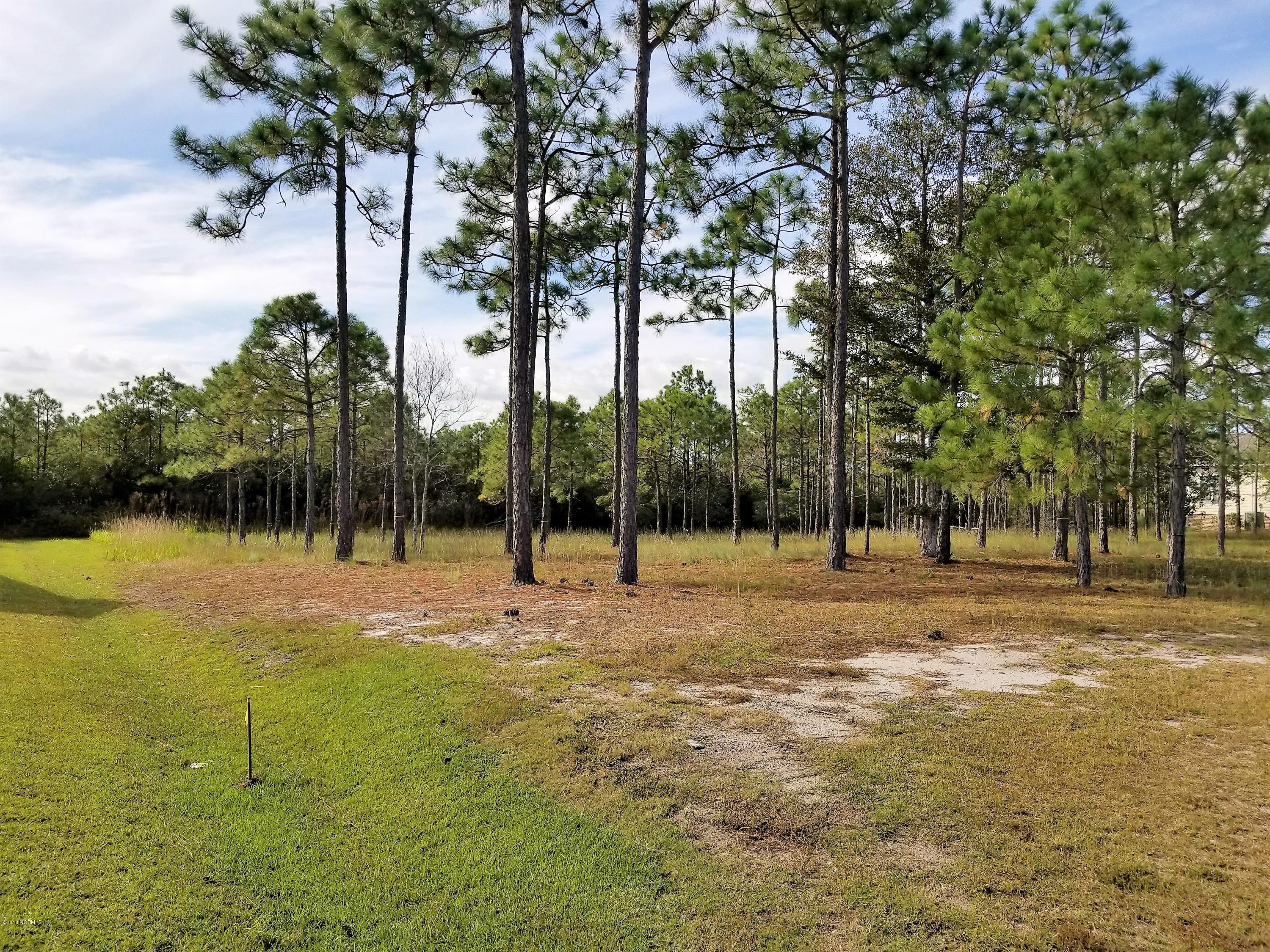 2833 Pine Forest Drive Southport, NC 28461
