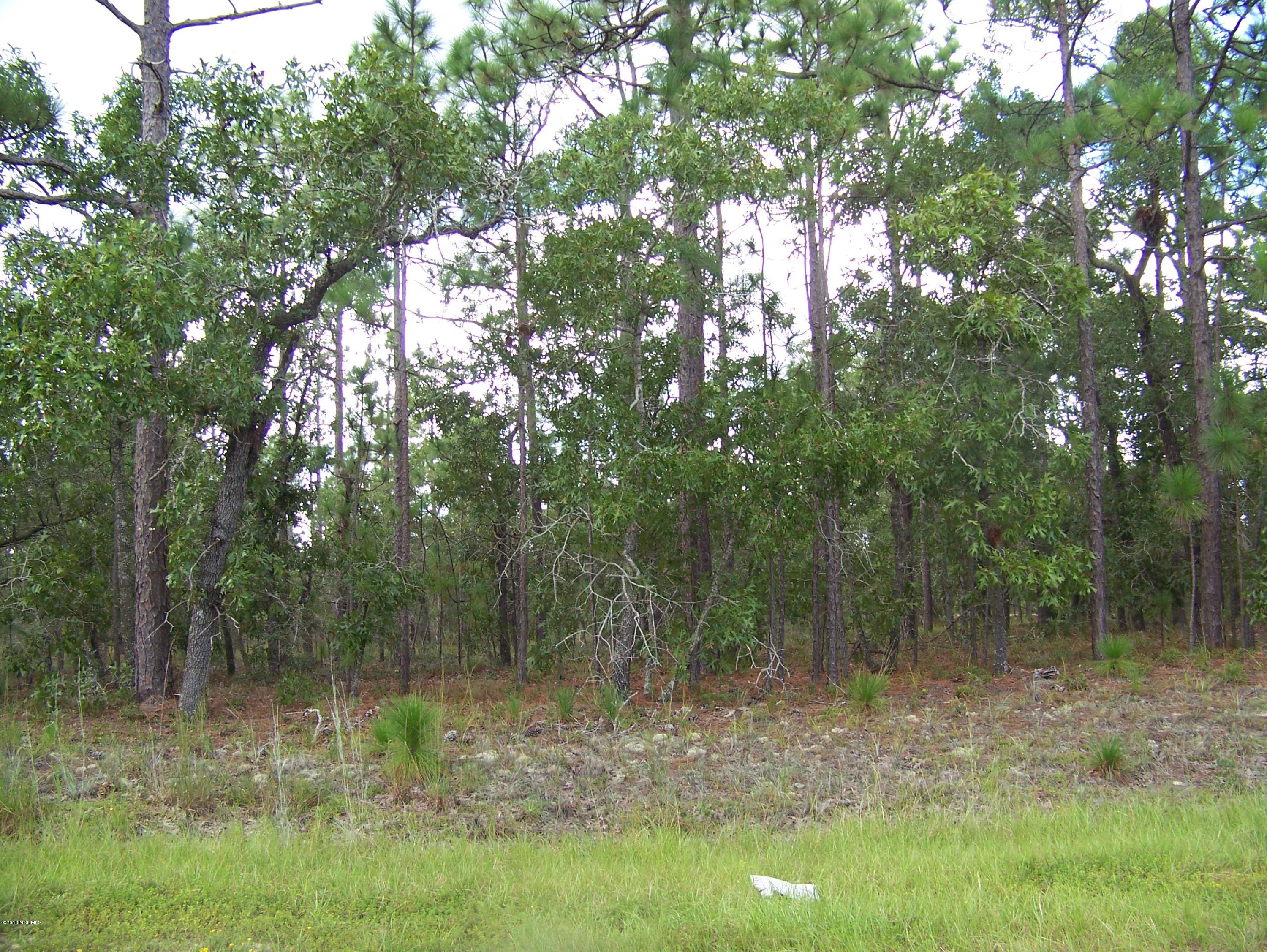 30 Lots W Boiling Spring Road Boiling Spring Lakes, NC 28461