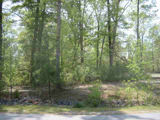 Nestled in established and desirable Oakhurst River Estates is where you will find this large lot. Located near MCAS New River, shopping, restaurants and much more in an up and coming area!