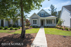 328 Camber Drive, Lot 41, Castle Hayne, NC 28429