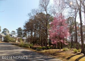 4387 12 Polly Gully Court, Southport, NC 28461