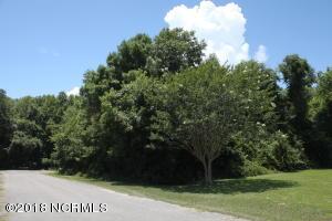 Lot 13 Pelican Walk End, Hampstead, NC 28443
