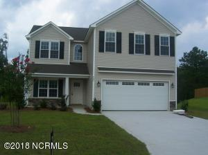 462 Avendale Drive, Rocky Point, NC 28457